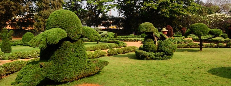 Botanical Gardens Hyderabad Timings & Entry Fee